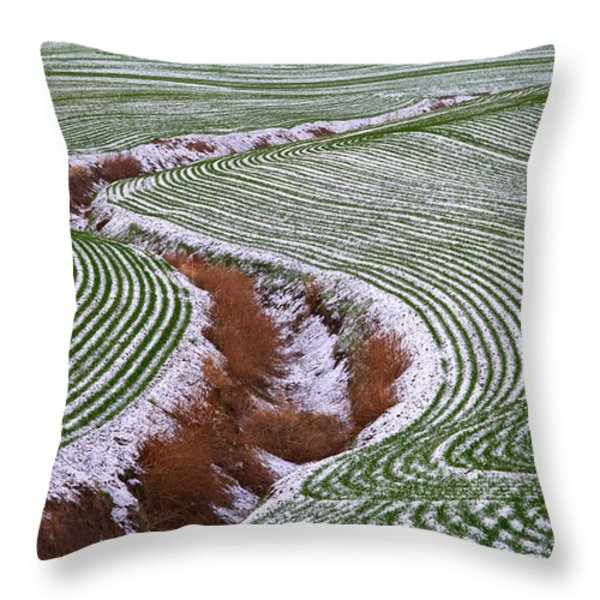 Patterns 2 Throw Pillow by Don Hall