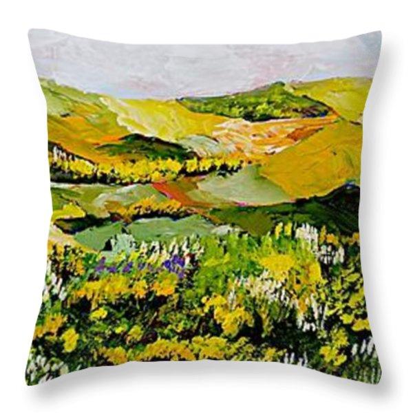 Patterns Throw Pillow by Allan P Friedlander