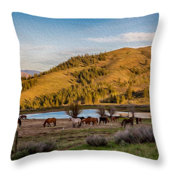 Patterson Mountain Afternoon View Throw Pillow by Omaste Witkowski