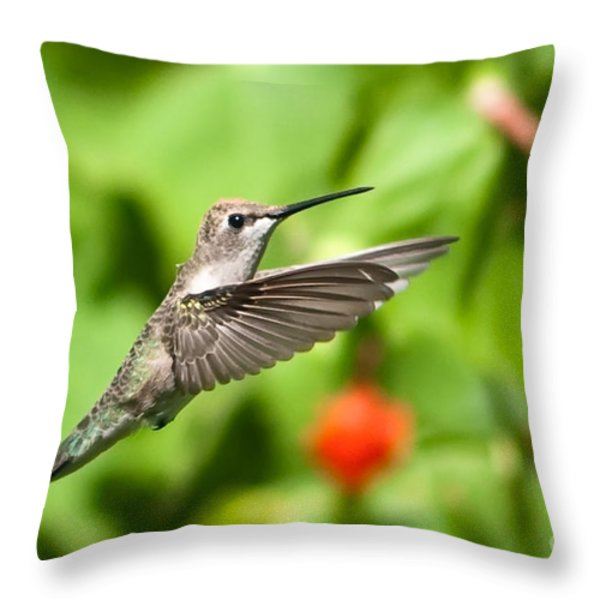 Pause in Motion Throw Pillow by Charles Dobbs