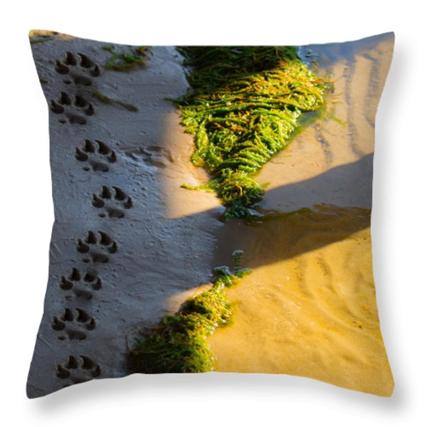 Pawprints In The Sand Throw Pillow by Parker Cunningham
