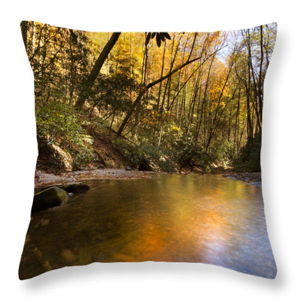 Peace Like A River Throw Pillow by Debra and Dave Vanderlaan