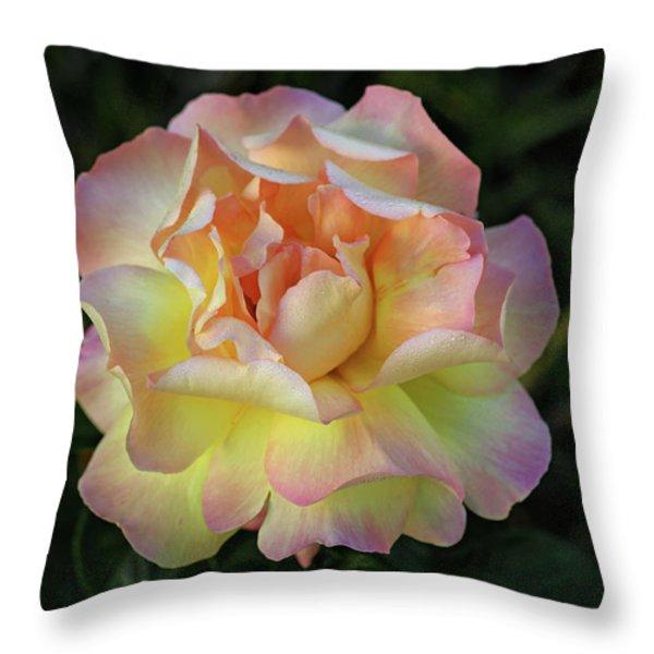 Peace Rose Throw Pillow by Sandy Keeton