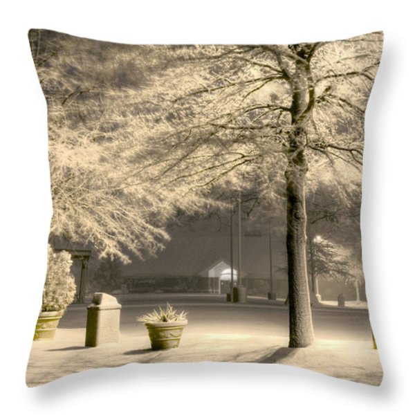 Peaceful Blizzard Throw Pillow by JC Findley