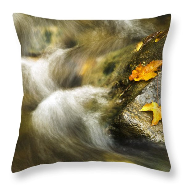Peaceful Creek Throw Pillow by Christina Rollo
