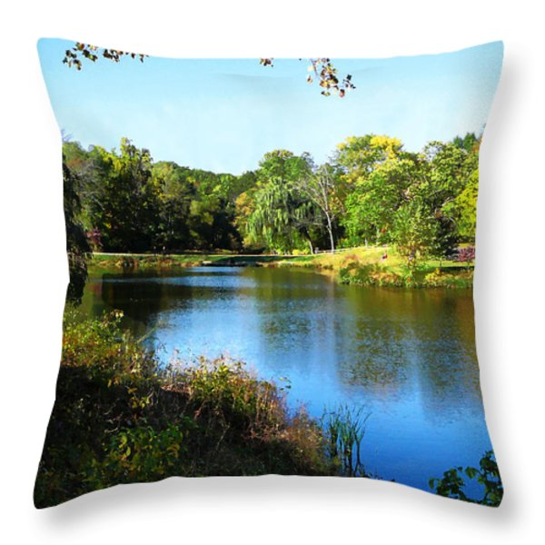 Peaceful Lake Throw Pillow by Susan Savad