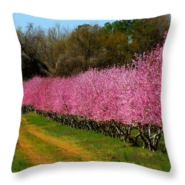 Peach Orchard In Carolina Throw Pillow by Lydia Holly