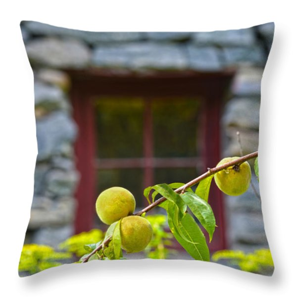 Peach Tree At The Old Mill Of Guilford Throw Pillow by Sandi OReilly