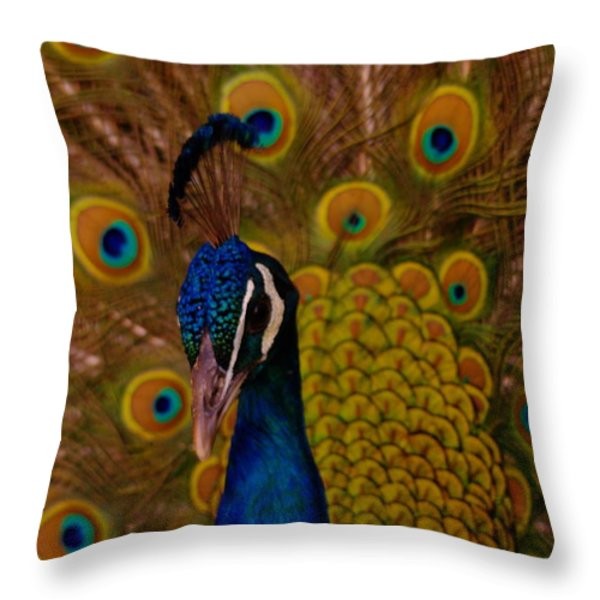 Peacock Throw Pillow by Jeff Swan