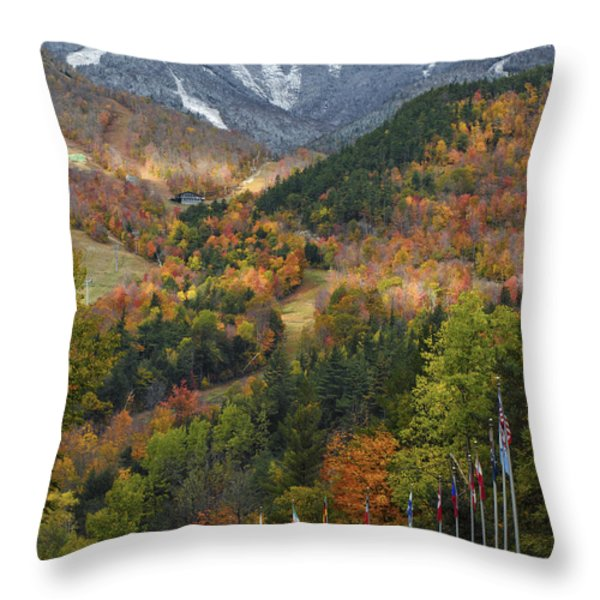 Peaked Throw Pillow by Mark Papke