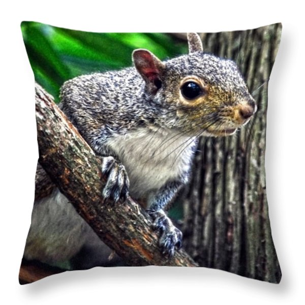 Peanut? Treat? Throw Pillow by Sandi OReilly