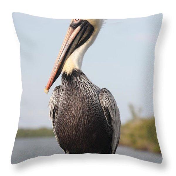 Pelican Pose Throw Pillow by Carol Groenen