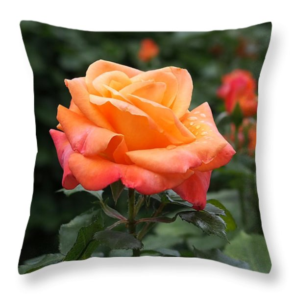Pensioners Voice Roses Throw Pillow by Rona Black