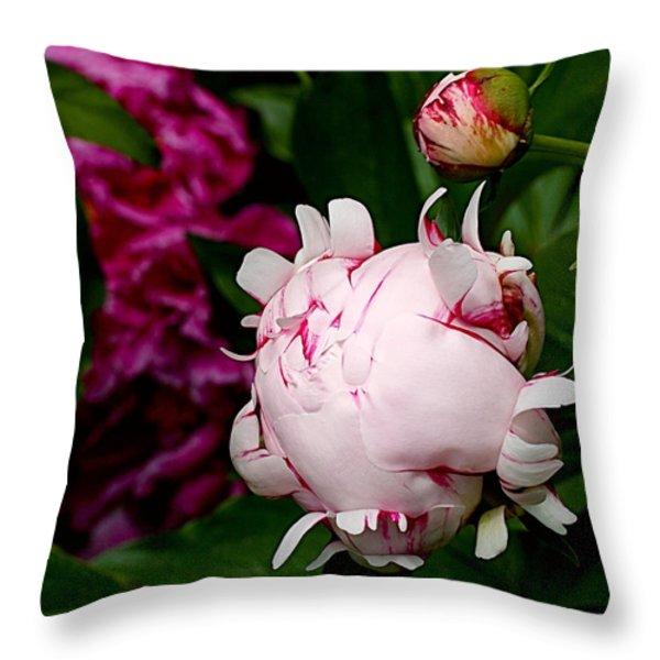 Peony Life Throw Pillow by Rona Black