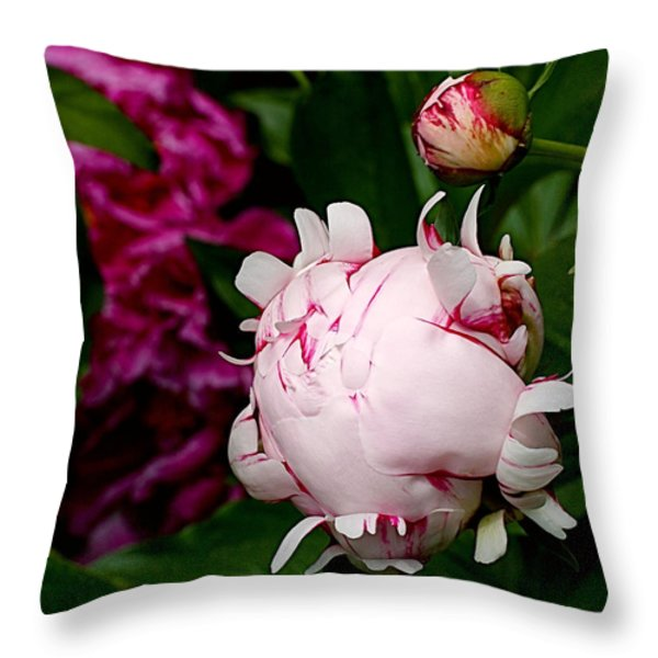 Peony Life Throw Pillow by Rona Black