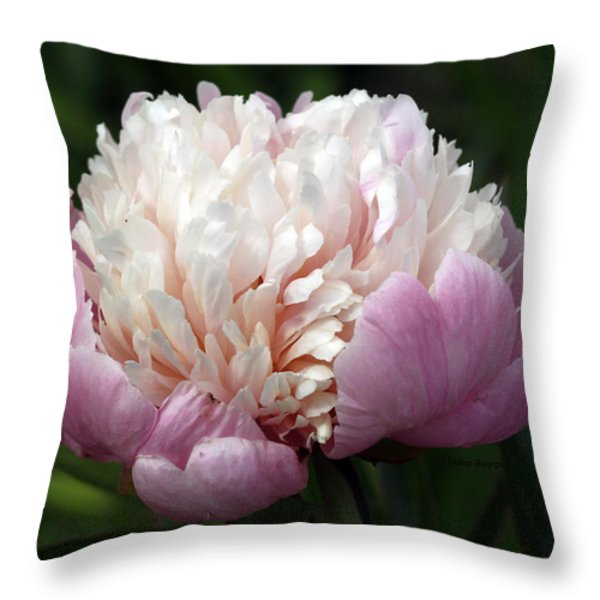 Peony Sorbet Throw Pillow by Kristy Jeppson