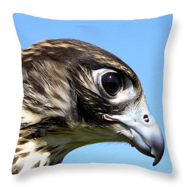 Peregrine Falcon Tashunka Throw Pillow by Christina Rollo
