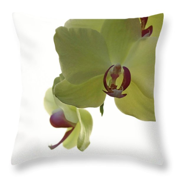 Perfect Moments Orchid  Throw Pillow by Inspired Nature Photography By Shelley Myke