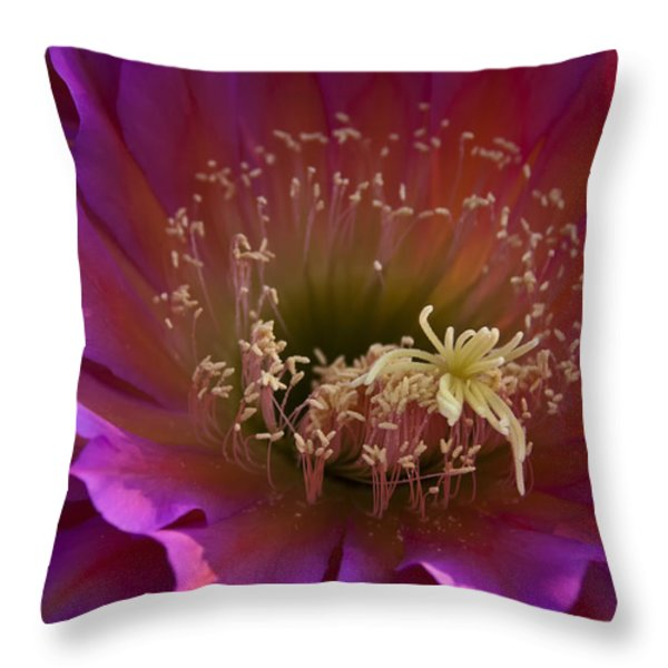 Perfectly Pink Throw Pillow by Saija  Lehtonen