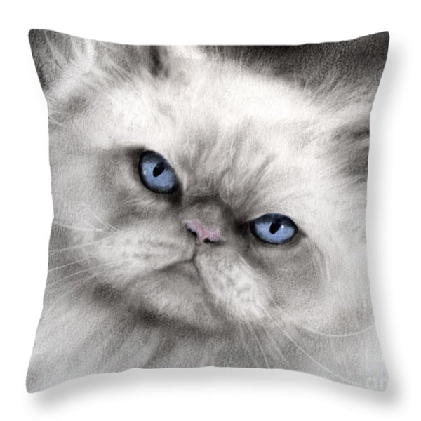 Persian Cat with blue eyes Throw Pillow by Svetlana Novikova