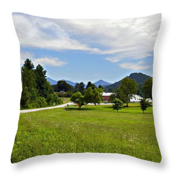 Persimmon Valley Throw Pillow by Susan Leggett