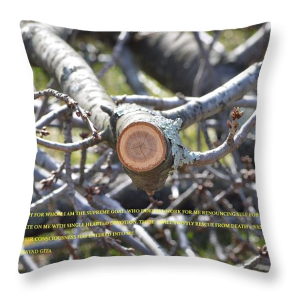 Perspective Throw Pillow by Sonali Gangane