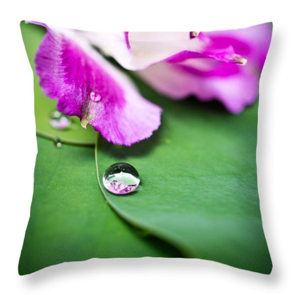 Peruvian Lily Raindrop Throw Pillow by Priya Ghose