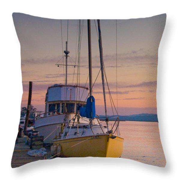 Petaluma River II Throw Pillow by Bill Gallagher