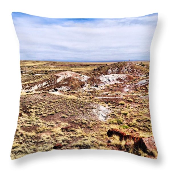 Petrified Forest National Park Throw Pillow by Dan Sproul