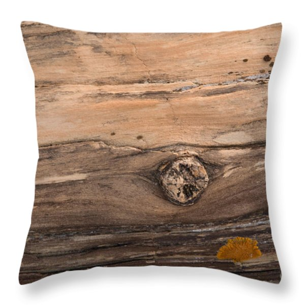 Petrified Wood Detail Throw Pillow by Vivian Christopher