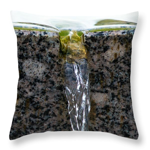Phone Case - Cold And Clear Water Throw Pillow by Alexander Senin