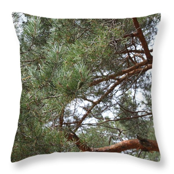 Pine Branches Throw Pillow by Evgeny Pisarev
