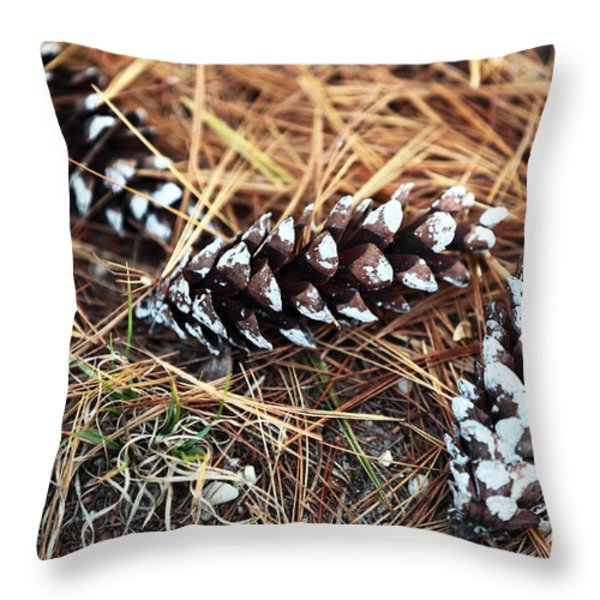 Pine Combs Throw Pillow by John Rizzuto