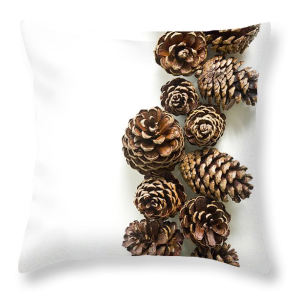 Pine Cones Throw Pillow by Edward Fielding