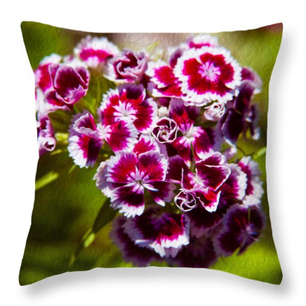 Pink and White Carnations Throw Pillow by Omaste Witkowski