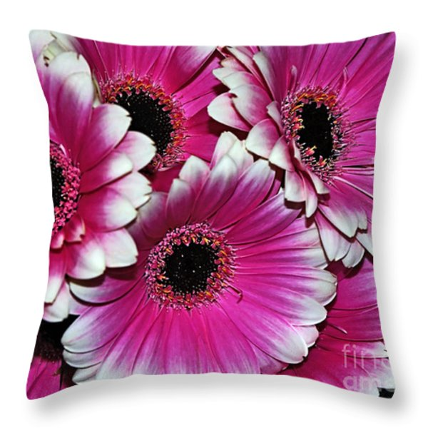 Pink And White Ornamental Gerberas Throw Pillow by Kaye Menner