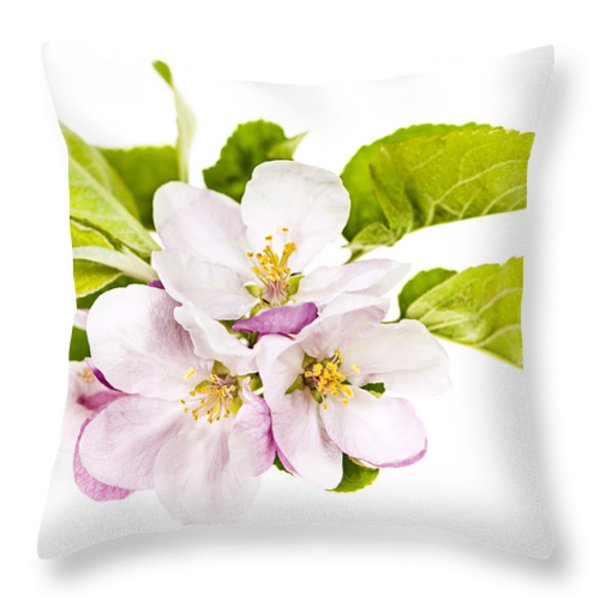 Pink apple blossoms Throw Pillow by Elena Elisseeva