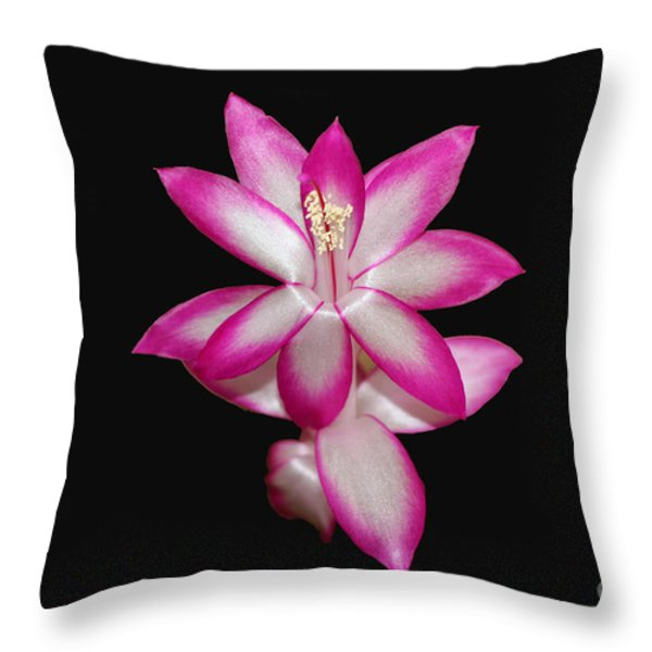 Pink Christmas Cactus On Black Throw Pillow by Michael Waters