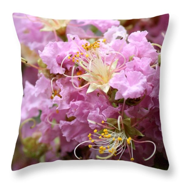 Pink Crepe Myrtle Closeup Throw Pillow by Carol Groenen