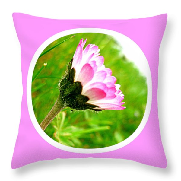 Pink Daisy Throw Pillow by The Creative Minds Art and Photography