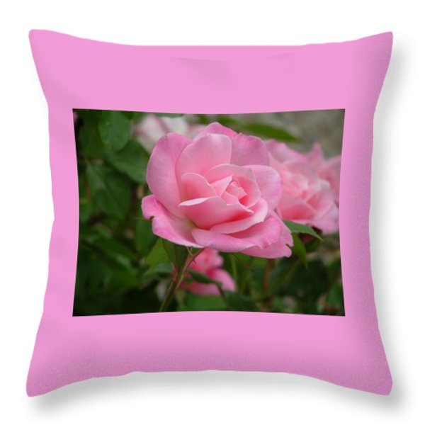Pink Delicacy Throw Pillow by Lorna Hooper
