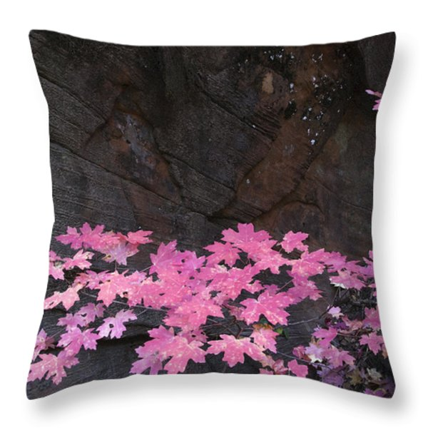 Pink Fall Colors In Sedona Arizona Throw Pillow by Dave Dilli