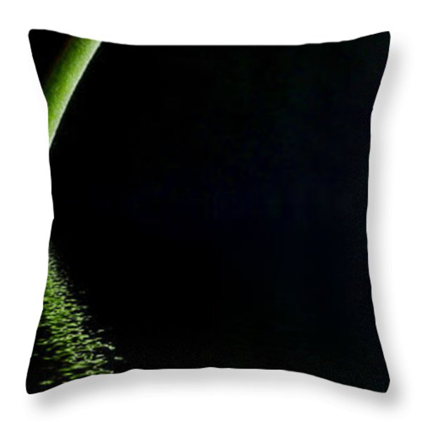 Pink Gerbera Flood 6 Throw Pillow by Steve Purnell