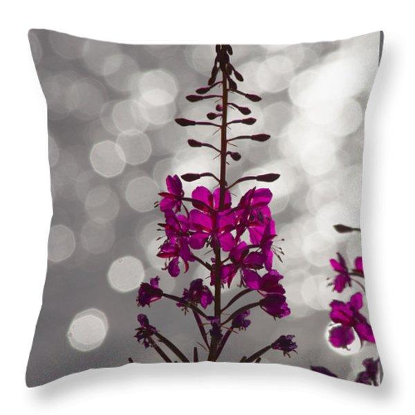 Pink  Throw Pillow by Heiko Koehrer-Wagner