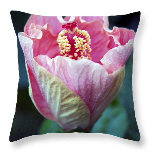 Pink Hibiscus Flower Bud Throw Pillow by Karon Melillo DeVega
