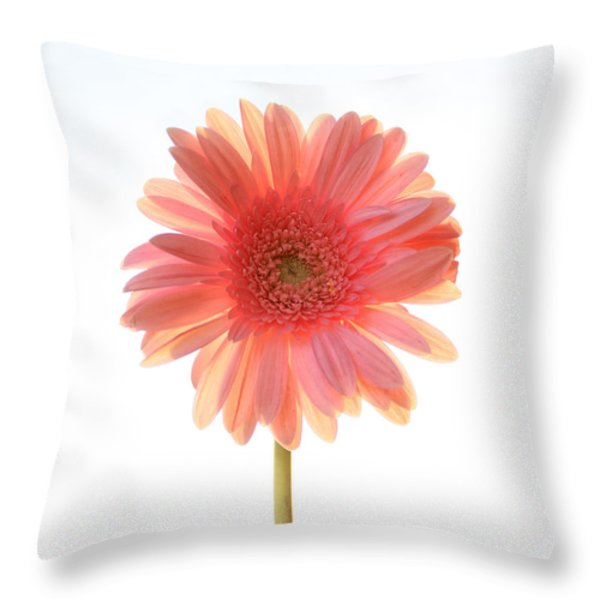 Pink Lemonade Throw Pillow by Amy Tyler