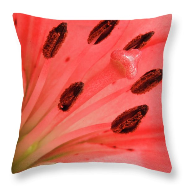 Pink Lily Macro Throw Pillow by Adam Romanowicz