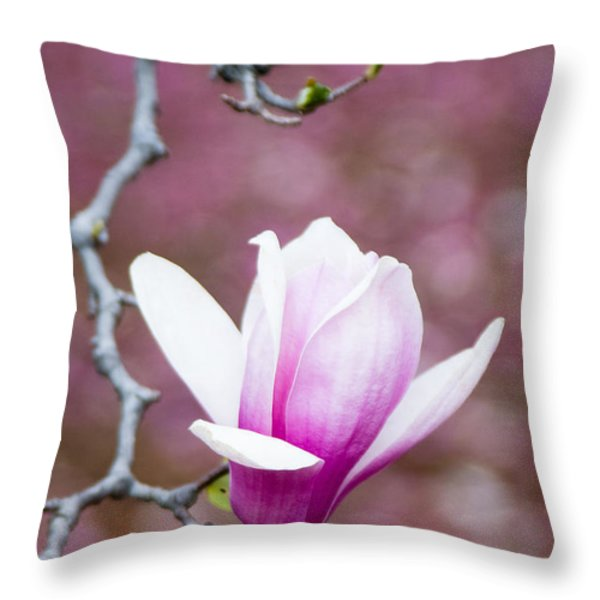 Pink Magnolia Flower Throw Pillow by Oscar Gutierrez