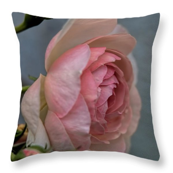 Pink Rose Throw Pillow by Leif Sohlman