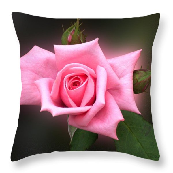 Pink Rose Throw Pillow by Thomas Woolworth